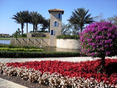 Seasonal color beds at Jupiter Country Club.  Call Realtor Richard Sites, 561-762-4073 to see any home listed for sale in this area.