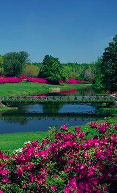 Mirror Lake at Bellingrath Gardens in Theodore, Alabama • photo: Bellingrath Gardens and Home