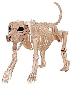 Beagle Bonez Skeleton Dog