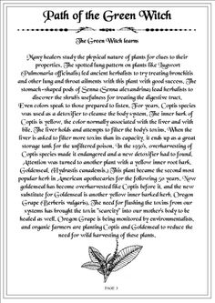 Book of Shadows: Path of the Green Witch page Green Witchcraft, Wicca Witchcraft, Which Witch, Herbal Magic, Hedge Witch, Eclectic Witch, Witch Spell, Magic Spells, Luck Spells