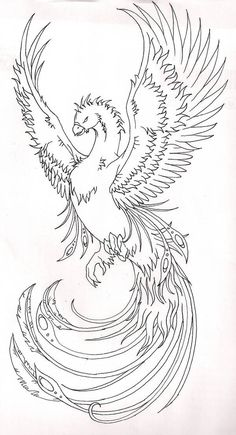 Ideas phoenix bird stencil deviantart for 2019 Phoenix Artwork, Phoenix Drawing, Phoenix Bird Tattoos, Phoenix Tattoo Design, Phoenix Design, Bild Tattoos, Body Art Tattoos, Tattoos Skull, Tatoos
