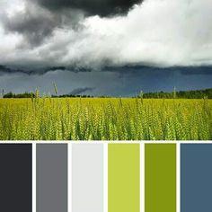 Green & Grey!