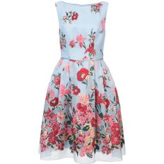 Carolina Herrera floral bouquet cocktail dress (89 655 UAH) ❤ liked on Polyvore featuring dresses, blue, floral printed dress, floral dresses, floral skater skirt, flared skirts and blue dresses
