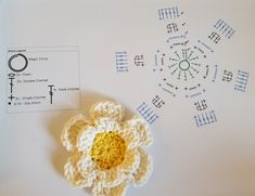 *~Flower Crochet-along~* Three flower patterns with a video crochet-along to help you master them! It's fall. It's gray outside. what better time than to plaster your home with ~…