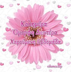 Happy Name Day, Greek Quotes, Good Morning Quotes, Good Night, Jelly, Nighty Night, Good Night Wishes, Jelly Beans, Jello