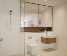 toilet wall mirror cabinets: very spacious because the ceiling seems to b