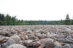 Boulder Field, National Natural Landmark, at Hickory Run State Park, PA