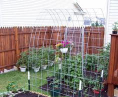 cinderblock raised bed and trellis