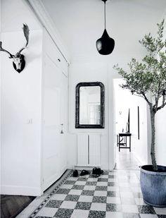 Cannes apartment, Femina dk.