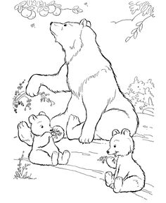 Wild animal coloring page | Wild bears eating berries