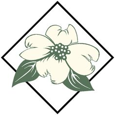 dogwood clipart 20 dogwood flower clip art free cliparts that you rh pinterest com dogwood clip art free dogwood flower clipart