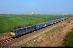 RailPictures.Net Photo: V43 1346 Hungarian State Railways (MÁV) V43 at Kiskunfélegyháza, Hungary by Tamás Rizsavi Hungary, Life