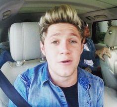 Niall - Carpool Karaoke with James Corden Niall Horan, James Corden Carpool, Special Snowflake, What Makes You Beautiful, Thanks For The Memories, James Horan, Kissing Him, Leprechaun, Just The Way