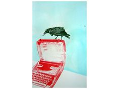 ANNA MARROW - Illustrator, Painter and Screen Printer