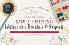 Epic Nature Watercolor Tool Kit:SALE by Amy J. Coe on Creative Market