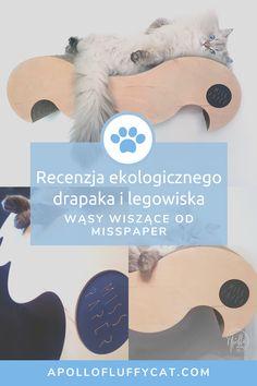 Uwielbiamy polskie i ekologiczne produkty, dlatego gdy natknęliśmy na kartonowe produkty dla kotów od Misspaper nie mogliśmy się powstrzymać przed wypróbowaniem ich. Recenzję ekologicznego drapaka Wąsy znajdziesz w moim artykule. Personal Care, Lifestyle, Blog, Self Care, Personal Hygiene, Blogging