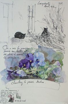 Yann LESACHER, cats and pansies water colour, it's a beauty!