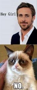 hey girl, grumpy cat
