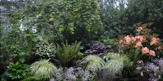 Seattle, Japanese Maple Garden Design Calimesa, CA