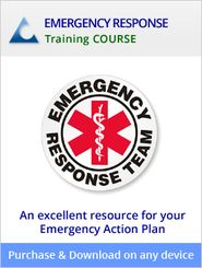 Community Emergency Response Team Cert Logo  Emergency