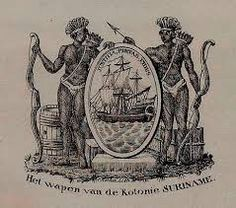 Image result for suriname wapen