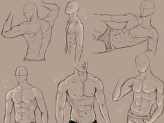 Male anatomy practice by *kingmaria on deviantart body sketches, drawing sketches, drawing art Male Figure Drawing, Body Reference Drawing, Body Drawing, Anatomy Reference, Art Reference Poses, Figure Drawing Practice, Male Drawing, Human Drawing, Hand Reference