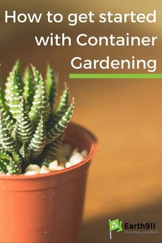 Eco friendly home garden on pinterest eco friendly recycling and gardens - How do i keep my container home cool ...