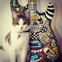 by Vitor Rolim (with a #cute #cat)