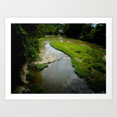 Beyond These Waters We Live Art Print by Patty B. - $17.68
