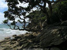 Waiheke Island (Australia)