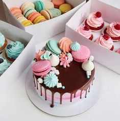 58 Ideas fruit cake decorating pictures for 2019 Cute Birthday Cakes, Beautiful Birthday Cakes, Fruit Birthday, Macaron Cake, Cupcake Cakes, Pretty Cakes, Cute Cakes, Cake Decorated With Fruit, Bolo Barbie