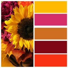 Miten tehdään värikartta picmonkey ohjelmalla! http://kukkailua.fi/miten-tehdaan-varikartta-picmonkey-ohjelmalla/