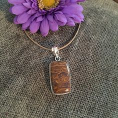 Picture Jasper, Silver Bezel & Bail. Tan cord necklace. Handmade by HappyLilac