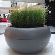 Beautiful Modern Design Round Large Planter Box from Stardust - http://www.stardust.com/xxl-round-planter.html