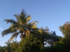Vista da minha varanda