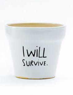I Will Survive Planter - LOL adorable!