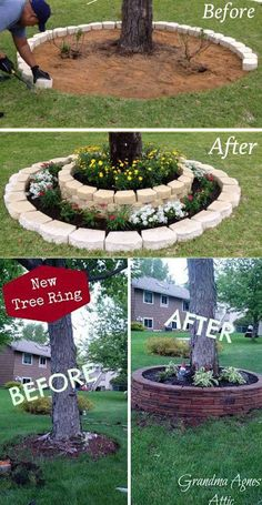 Create a landscape accent around your garden tree trunks with stacked stones. #diylandscape #treering #stackstone #gardenbed