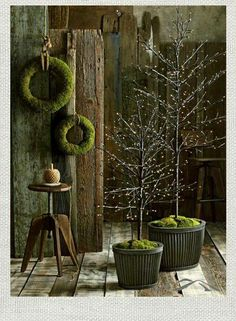 mossy, rustic, simple