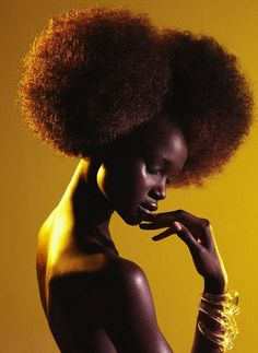 Afro puffs. Amber colored hair.