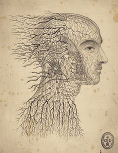 Tratamiento cefalea cervicogénica Imagen http://danielmartindiaz.com/