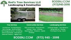 Tree Service In Morris County NJ