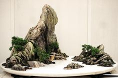 Traditional Chines Painting.?? - No it's actually a Penjing Tray Landscape, made of small living trees and river rocks... (~~,)