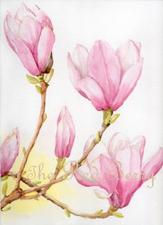 Flower watercolor Magnolias Floral Art Watercolor by TheRedBerry, €37.12: