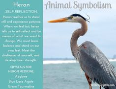 Animal Medicine: Heron by Lizzy Baxter - Current Updates - Information About Crystals As A Healing Tool Spirit Animal Totem, Animal Spirit Guides, Animal Totems, Animal Totem Meanings, Animal Symbolism, Spirit Meaning, Animal Medicine, Power Animal, Travel Humor