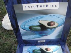 Foung this bowl an many other blue accessories in storage back in Perth