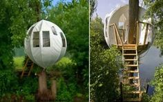 bubbletree tree house