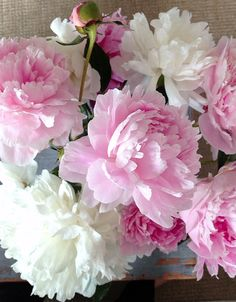 63 Ideas Garden Rose Bouquet Peony For 2019 Beautiful Flower Arrangements, Floral Arrangements, Beautiful Flowers, Beautiful Beautiful, White Flowers, Flor Iphone Wallpaper, Garden Rose Bouquet, Peony Flower, Pink Peonies
