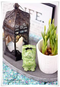 Feng Shui | Buddha | plant| metal candle light