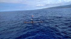 New solutions to help protect and preserve the Hawaiian and American Samoa marine sanctuaries and monuments will be developed through…