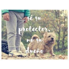 sé su protector, no su dueño